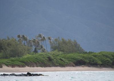 13_Maui