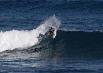 50_Surfing