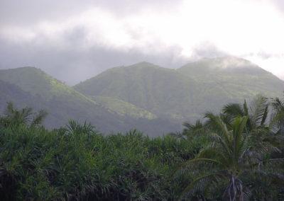 53_Maui