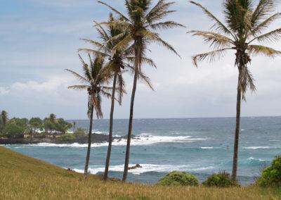 62_Maui