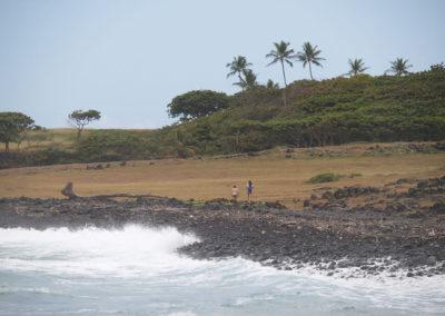 64_Maui