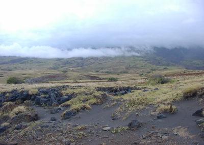 68_Maui