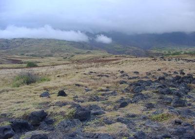 74_Maui