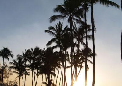 94_Maui