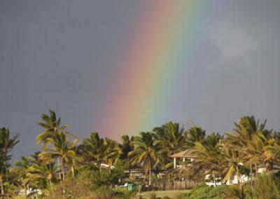 95_Maui