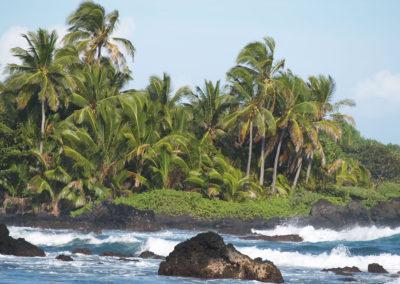 97_Maui